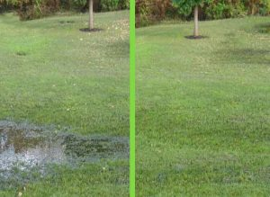 Septic-line-repair-clogged-backed-up-drain-andover-ct-emergency-plumber-plumbing-advice