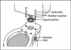 dummies-tank-diagram-toilet-leak-troubleshooting-tip-willimantic-ct-plumber