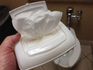 Do NOT flush wipes even if they say they are flushable