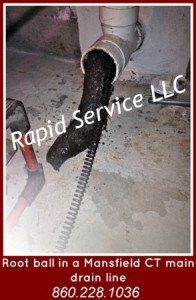 root-ball-clogged-drain-slow-drain-plumbing-mansfield-ct