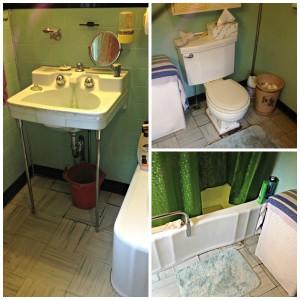 leak, leaking, faucet, tub, leaky toilet, water damage, toilet, sink, bath remodel